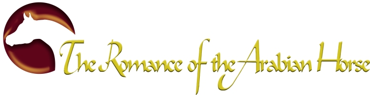 ABM romance logo